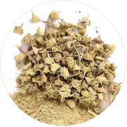 tribulus-terrestris for weight gain
